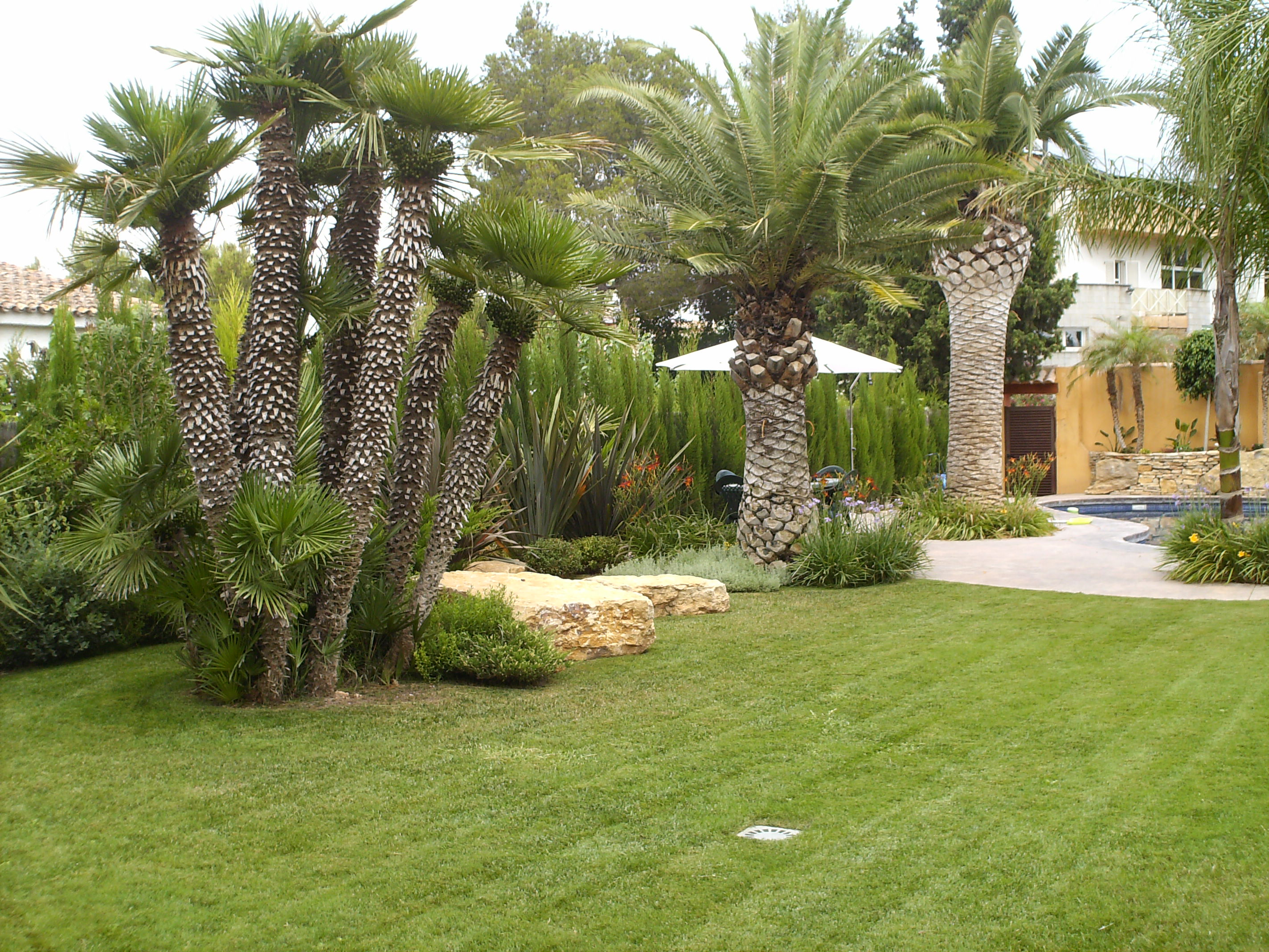Jardines y exteriores construcciones ramos levante for Jardines exteriores