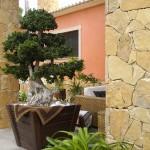 Jardines+chalets+construccionesramoslevante (59)